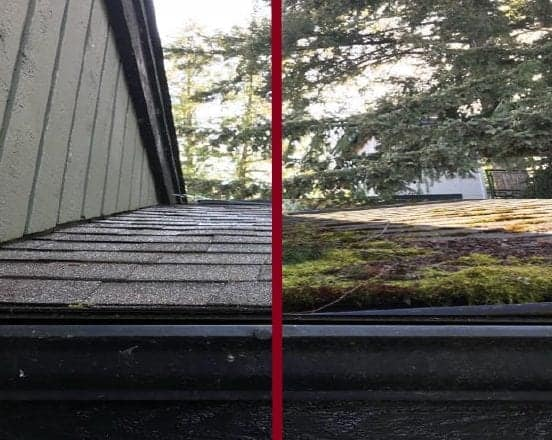 """Featured image for """"Roof Cleaning and Maintenance"""""""