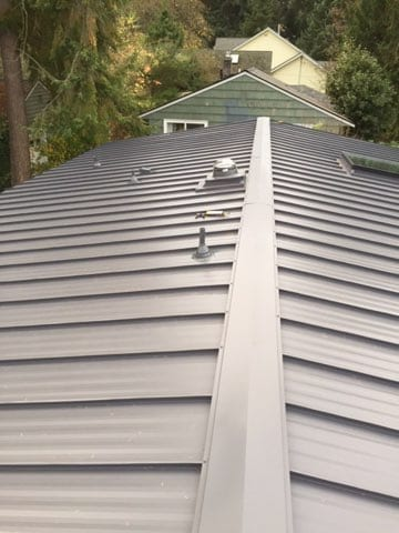 """Featured image for """"Standing Seam in Seattle"""""""