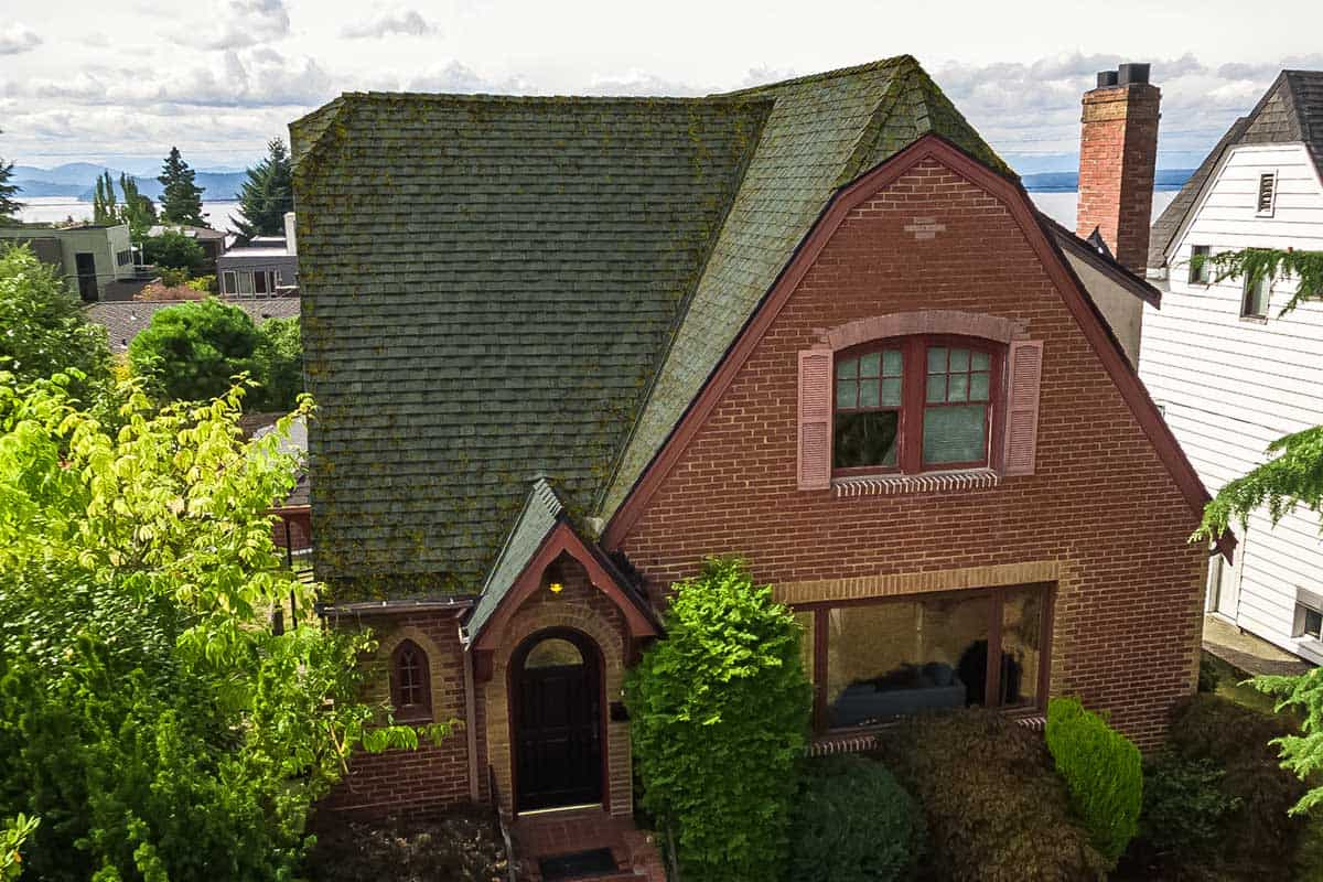 Two story brick home with a moss infested roof. Trees, plants and shrubs, other homes and with mountains and the Puget Sound in background.