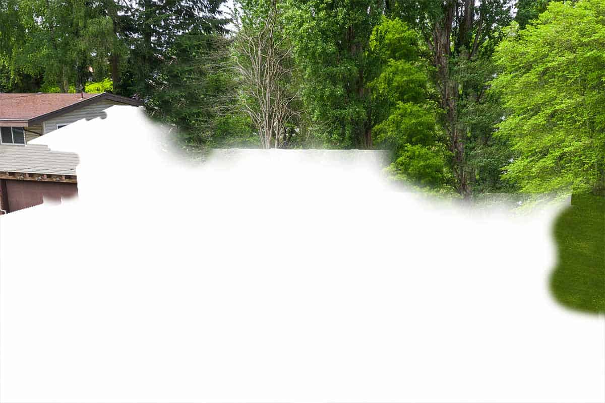 Partial view of a home surrounded by trees with more than half of the image cut out and displaying only white.