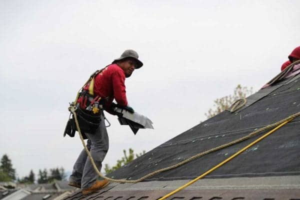 Roofing contractor wearing, hat, red tee, jeans, tool belt and a safety harness tied to rope anchored on top of a roof during a new roof install. Partial view of tree tops and hazy sky in background.