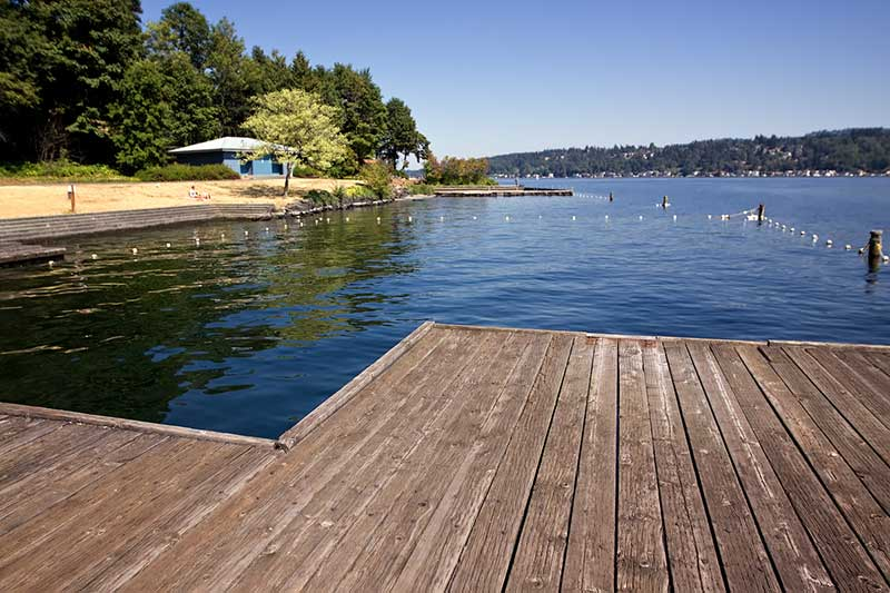 View from Mercer Island WA boat dock on Lake Washington. Roped swim area,  stairs leading to the water, lavatory, and trees