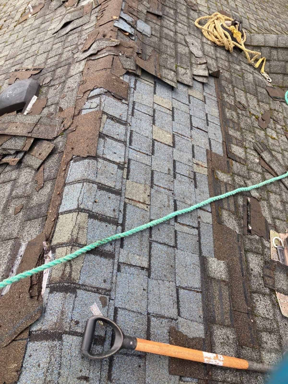 """Featured image for """"My Roof is Leaking 