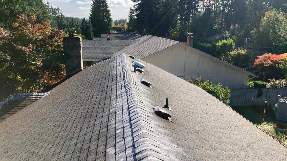 "Featured image for ""Prevent, Defend, Extend the life of Your Roof"""