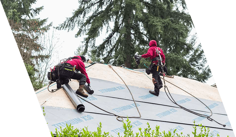 Two men wearing safety harnesses and well equipped tool belts on top of a roof during a new roof replacement. installation.