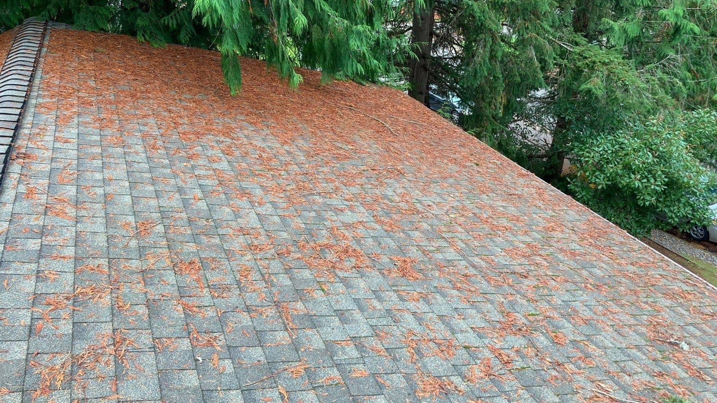"""Featured image for """"What to do After a Storm Hits Your Roof"""""""
