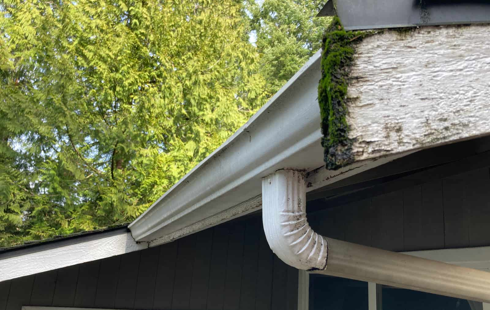 """Featured image for """"When to Replace vs Repair your Gutters"""""""