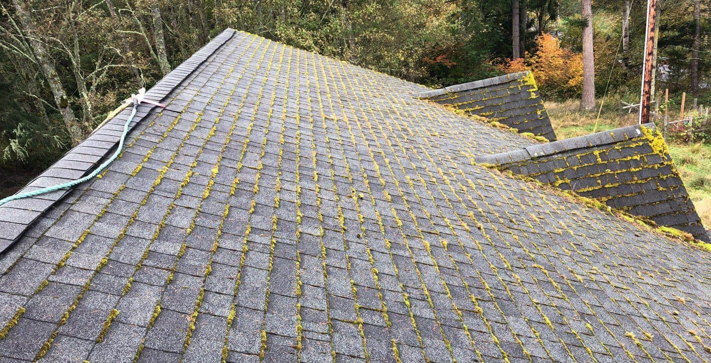 """Featured image for """"Signs That Your Roof Needs to be Cleaned"""""""